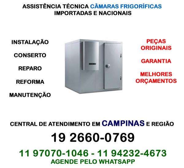 Assistência técnica câmara frigorífica